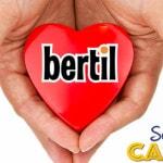 bertil casino 2016